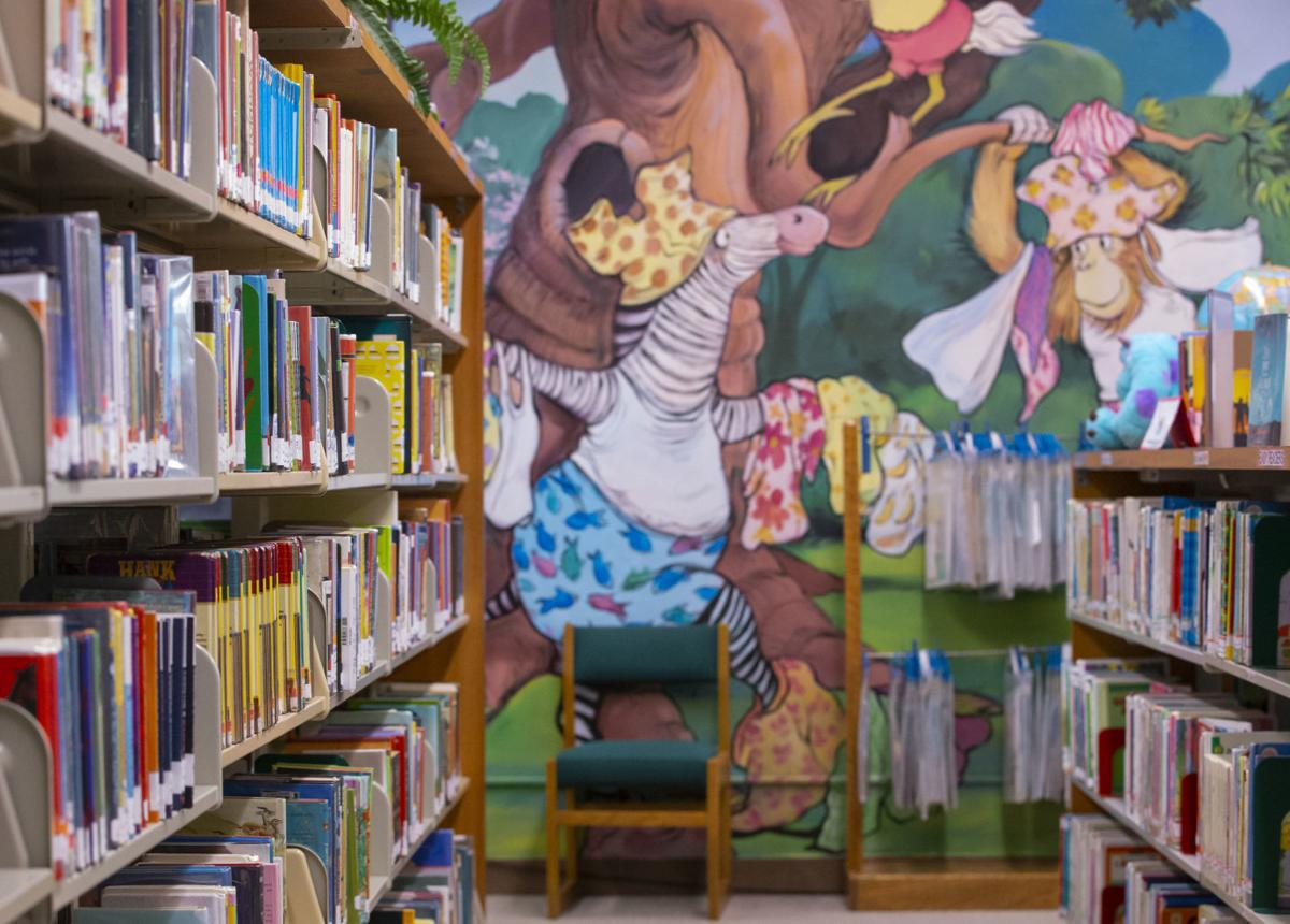 County Library Funding