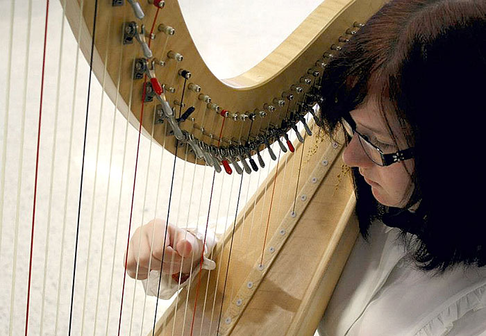 World-class harpist, student to perform at Crenshaw
