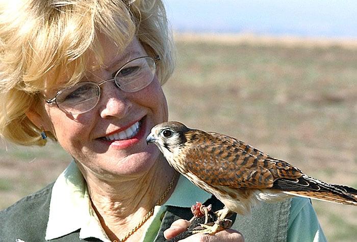 Boise boasts World Center for Birds of Prey
