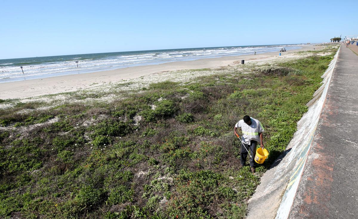 Can Galveston economy reopen without tourism?