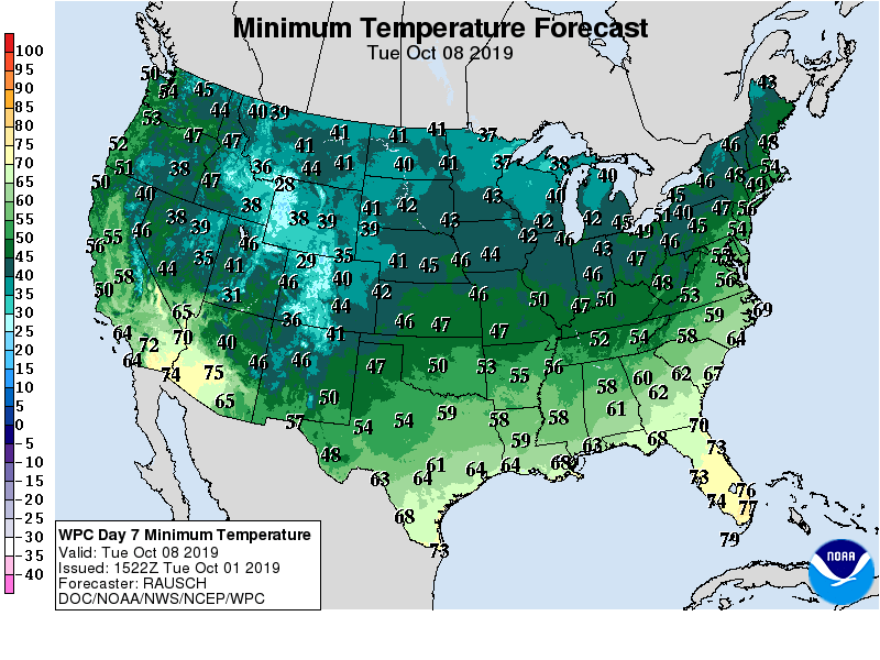 Minimum Temperature Forecast