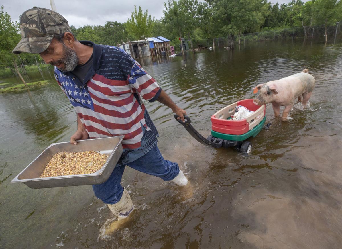 Galveston County Flash Flood
