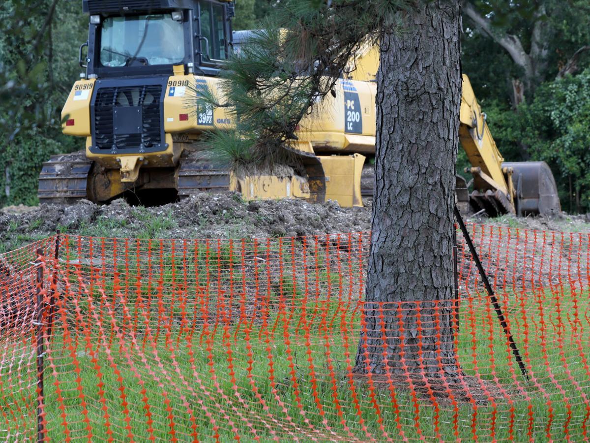 County cities wary of Abbott's tree deregulation proposals
