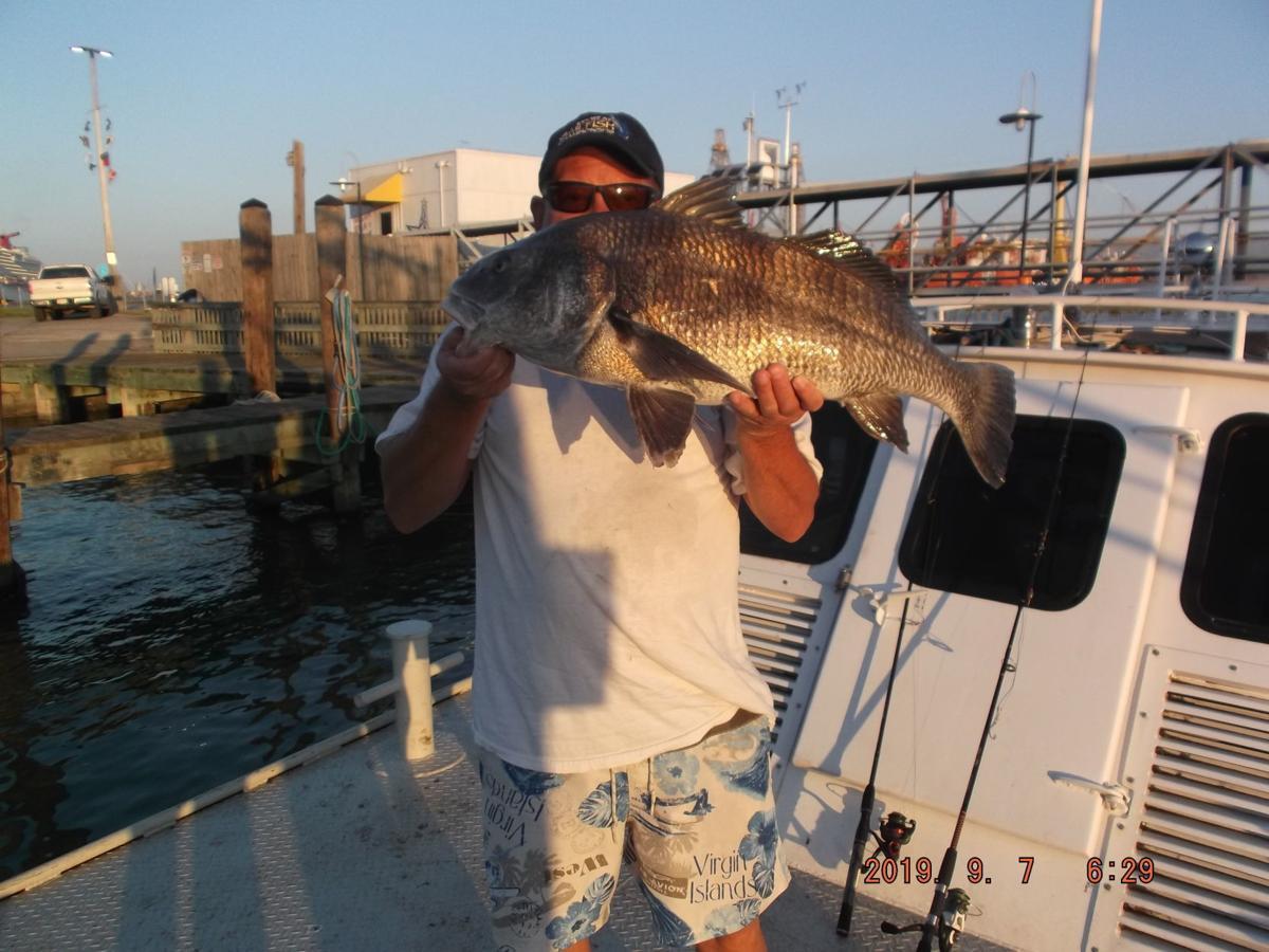 FISH 9-07-19-1.JPG