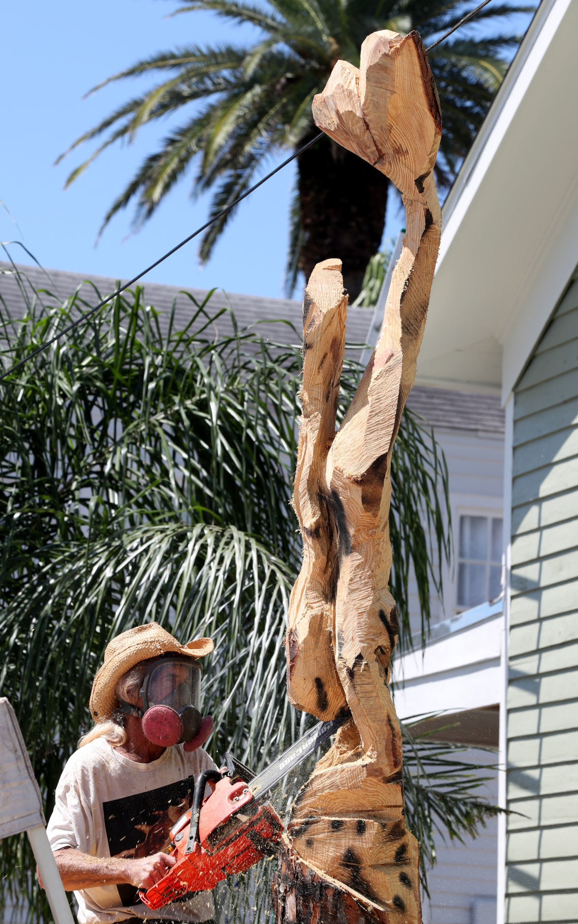 Tree Carver