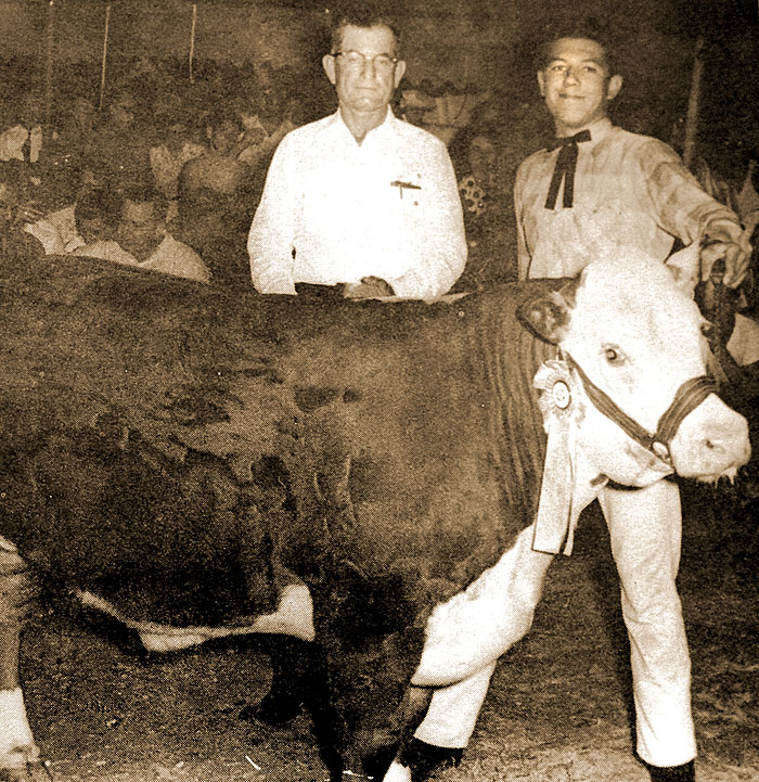 The 1964 reserve champ steer