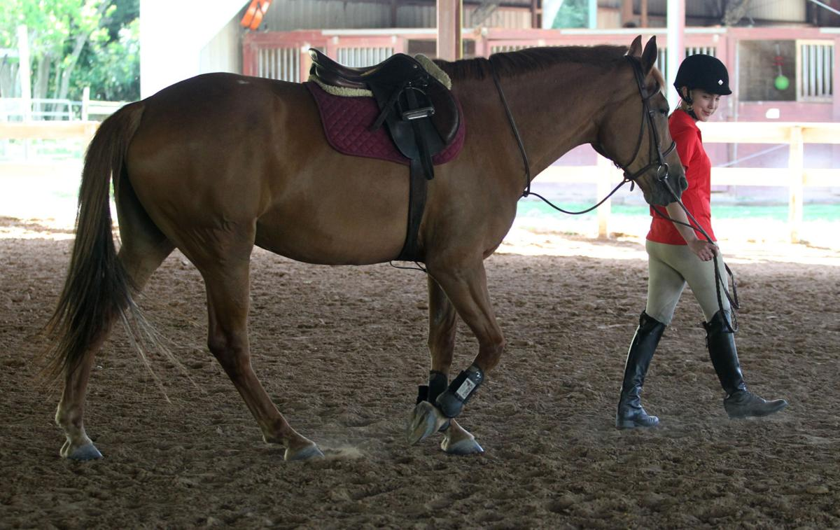 Area S New Interscholastic Equestrian Team Makes Name For