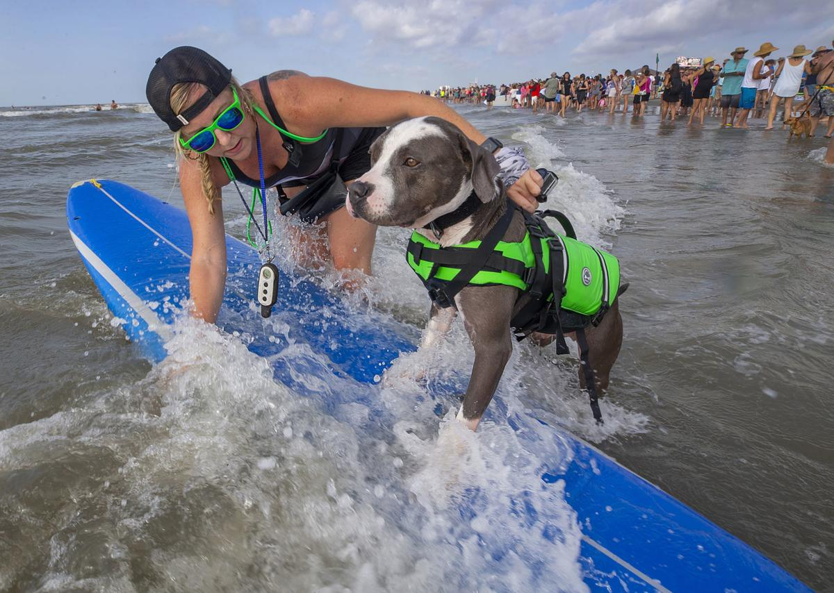Ohana Surf and Skate 2018 Surfdog Competition