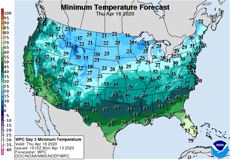 Minimum Temperature Forecast