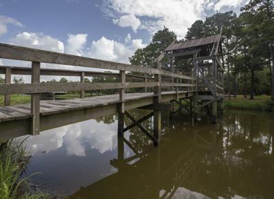 Paul Hopkins Park Bridge