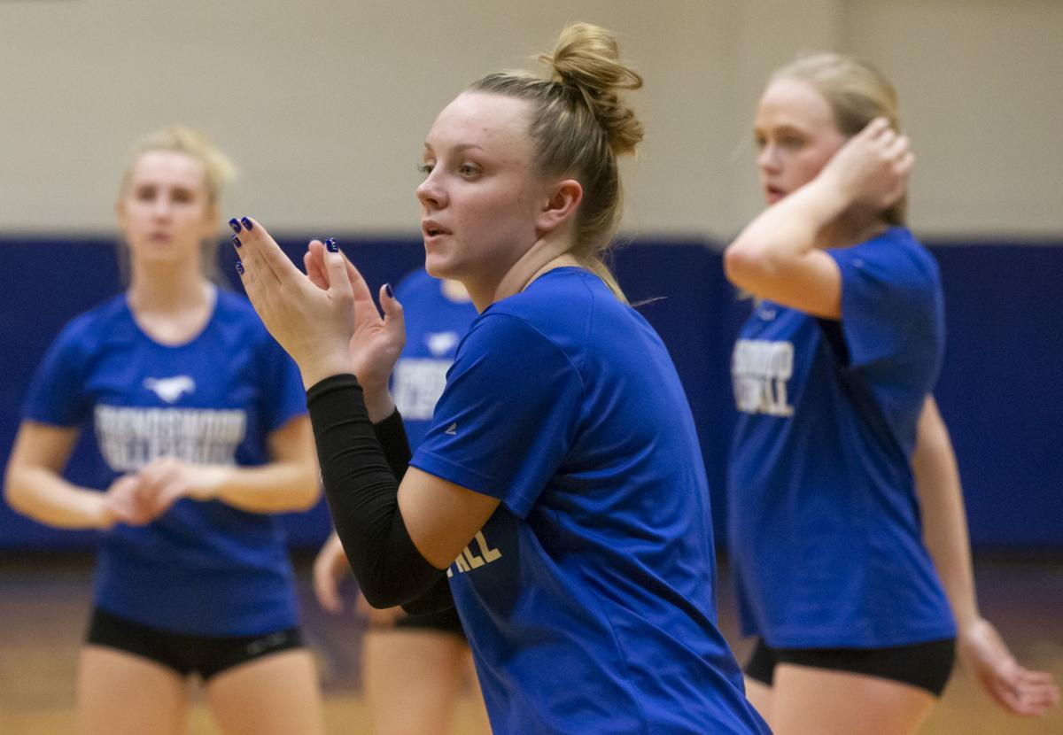 Friendswood State Volleyball Preview