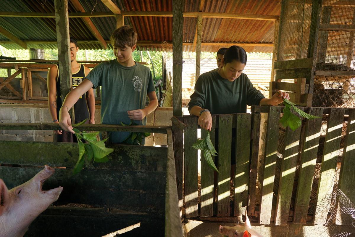 High Fives: Costa Rica photo2