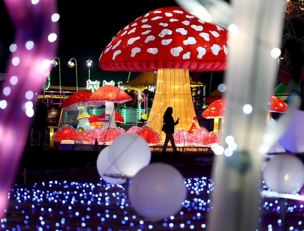 Magical Winter Lights festival