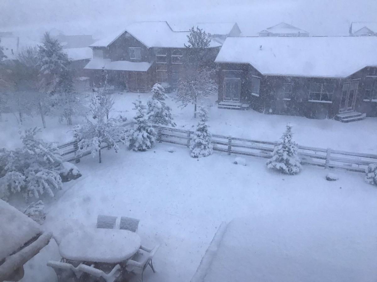 Snow - Wolf Ranch