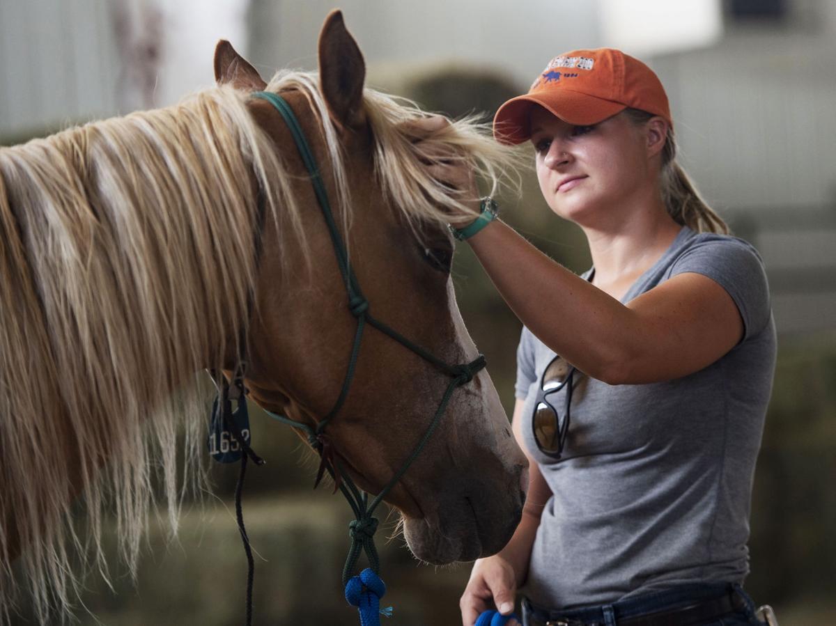 072119-news-horses 06.jpg