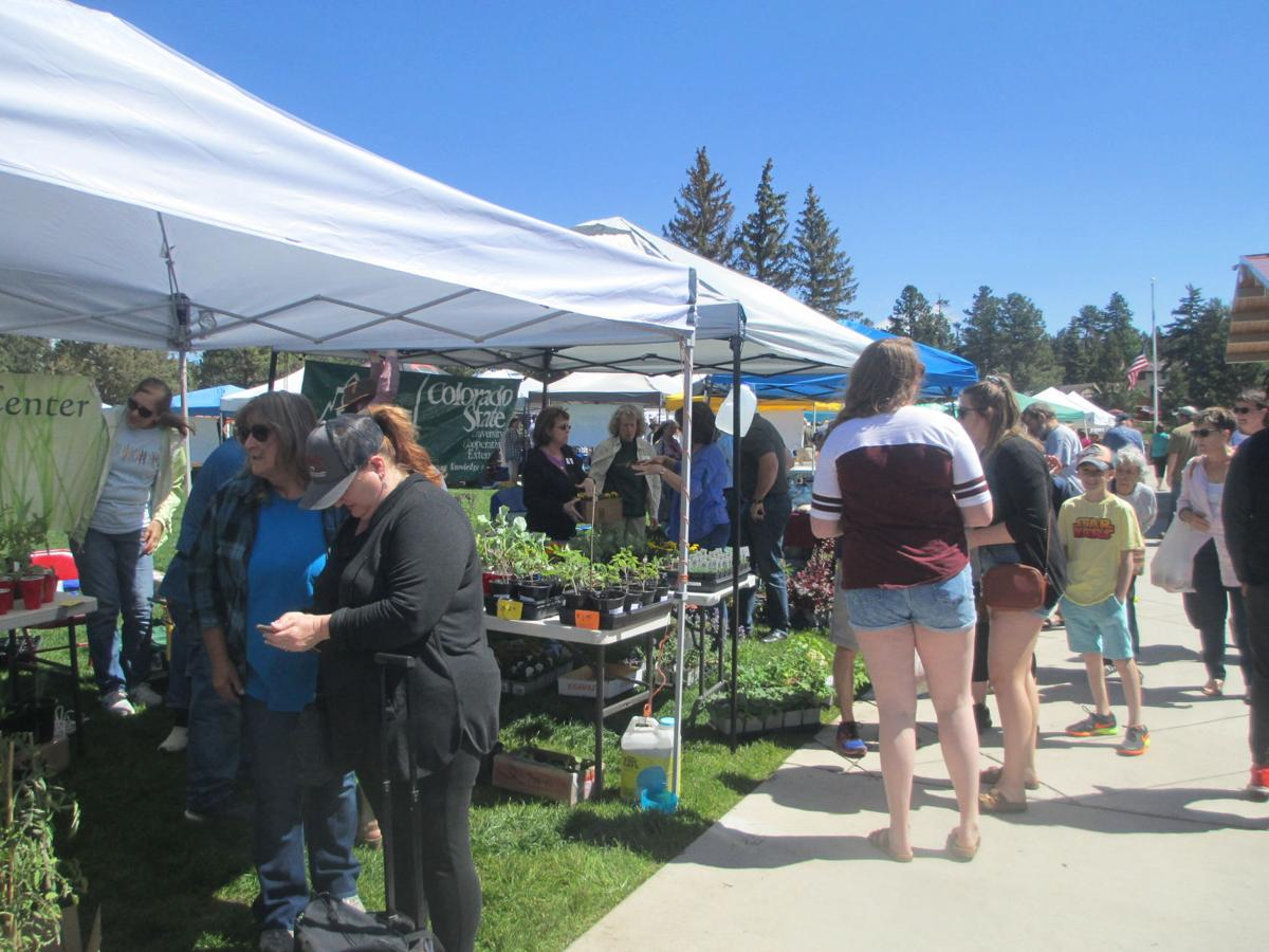 WP Farmers Market is abuzz in summer