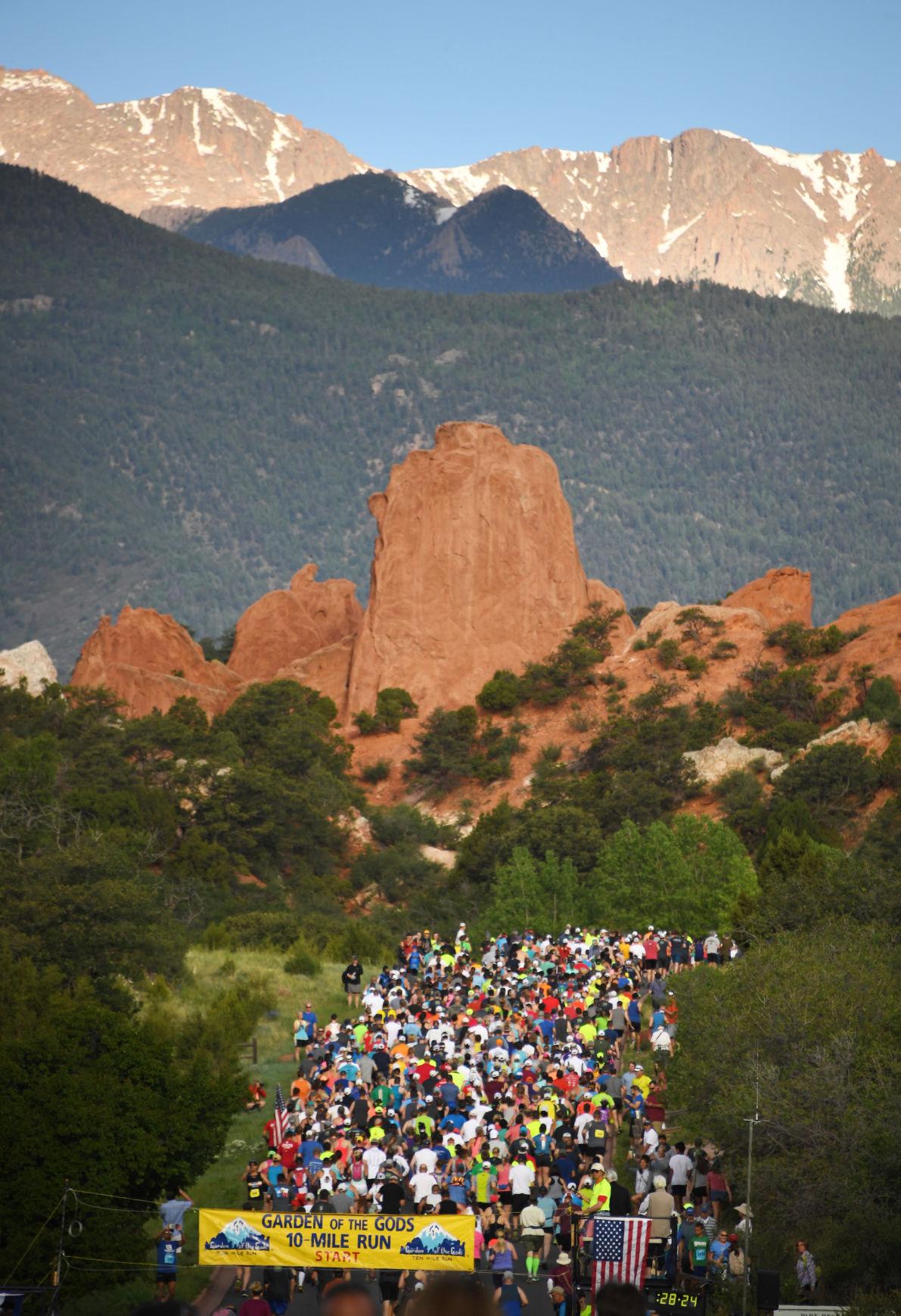 Bear crosses through Garden of the Gods 10 Mile Run | Sports ...
