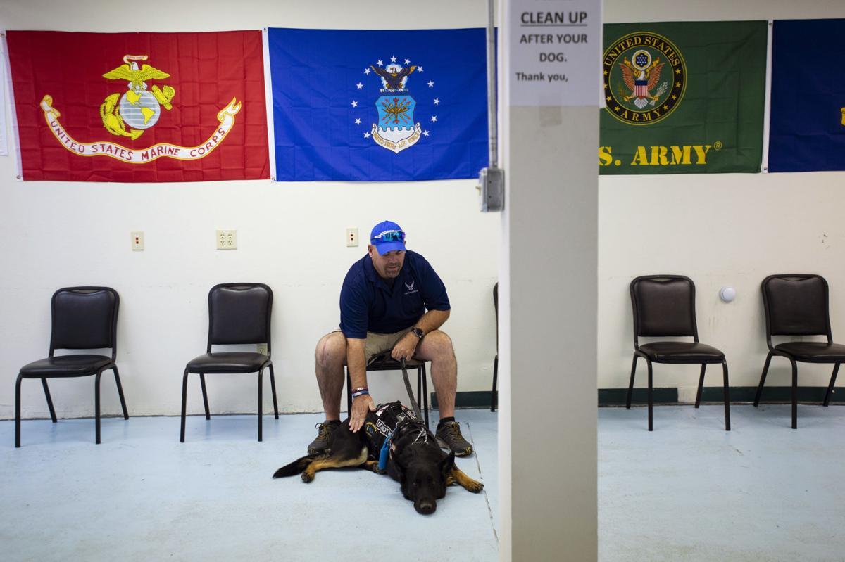 092019-fam-veteran-dogs 01