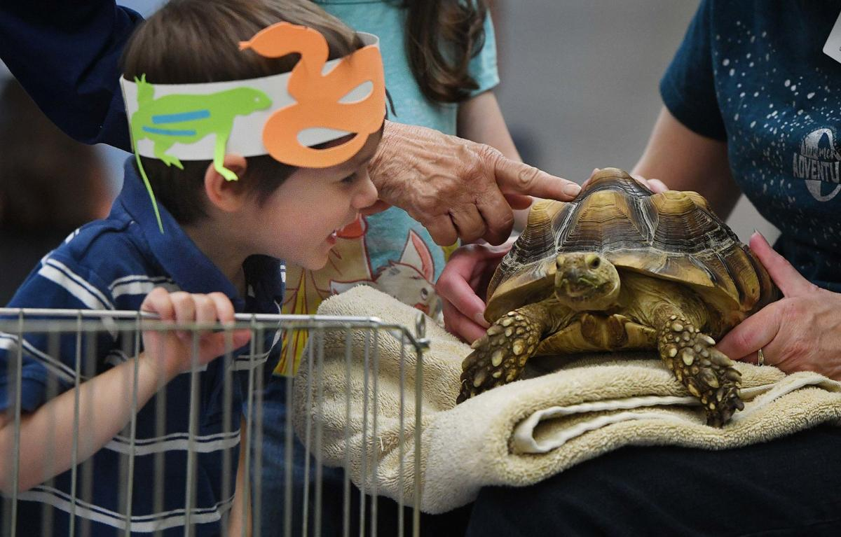 Little critters swarm East Library in summer PPLD event