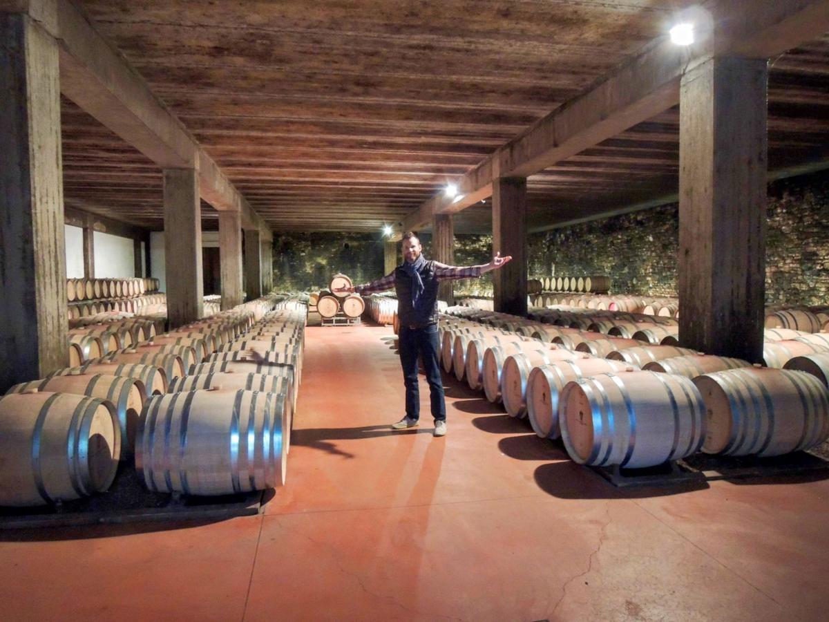 Aging barrels of Barbera