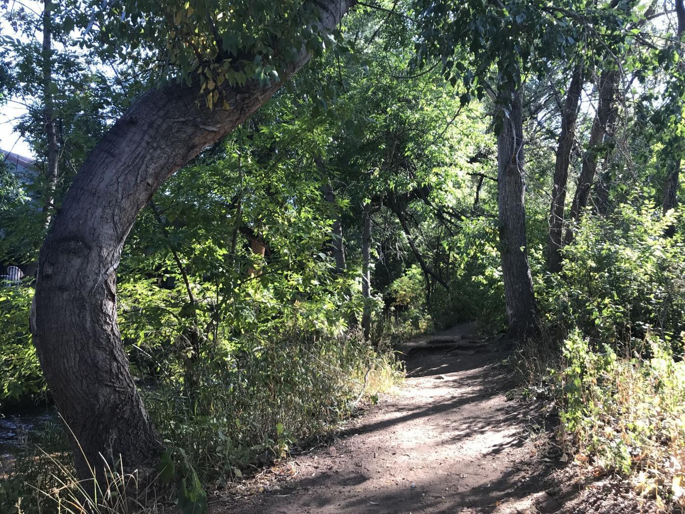 creekside 2.JPG