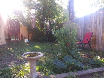 080420 garden.jpg