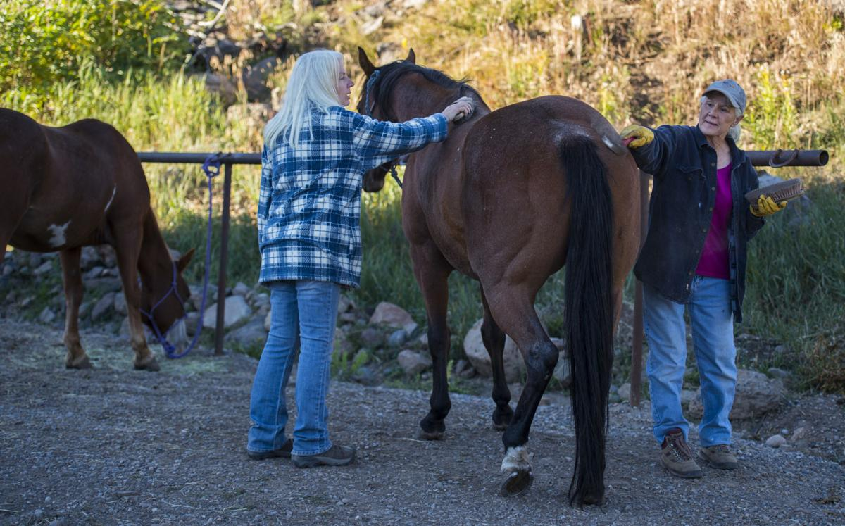 Co-owners Carol Steele, right, and Holly King prepare the horses at Trappers Lake Lodge in northwest Colorado Thursday morning, Sept. 8, 2016, before guiding a group into the Flat Tops Wilderness Area. (The Gazette, Christian Murdock)