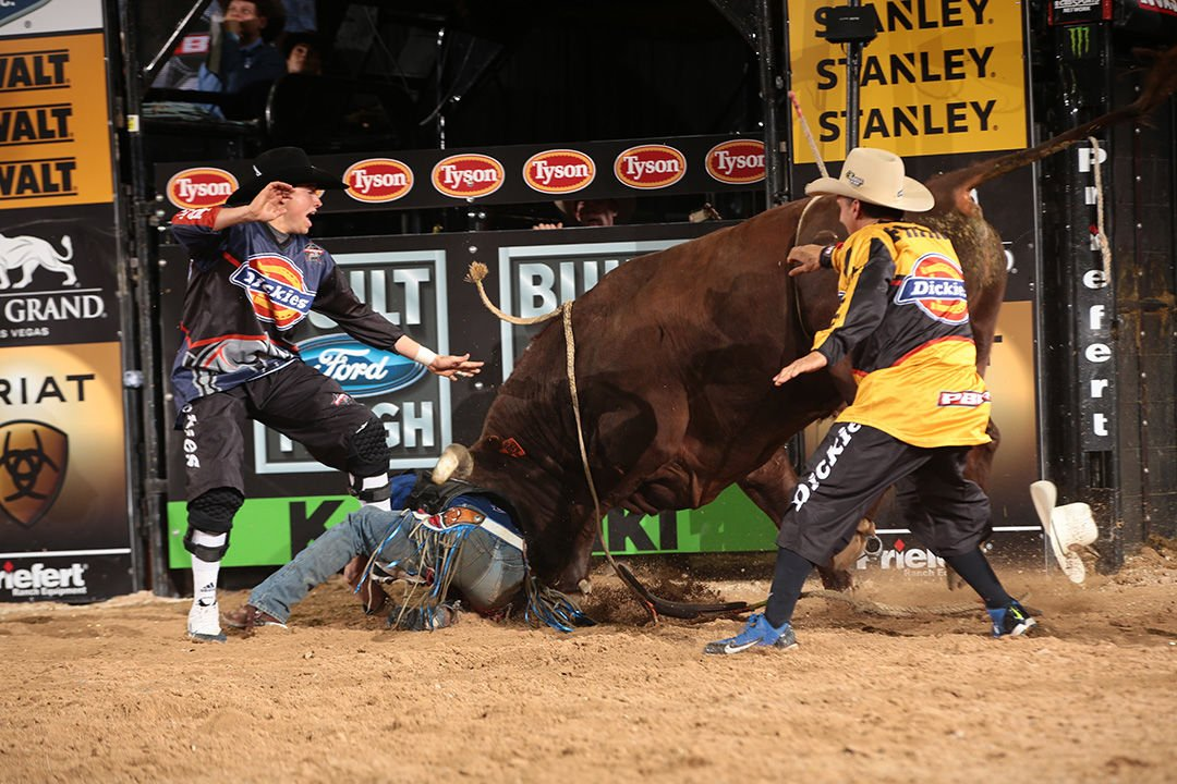 Renato Nunes attempts to ride Dakota/Berger/J.R. Scott/Schott's Rock River Red and Cody Webster steps in during the fifth round of the 2014 Built Ford Tough Series PBR World Finals. Photo by Andy Watson
