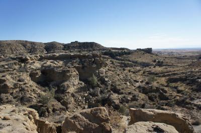 corral bluffs fossils 2.JPG (copy)