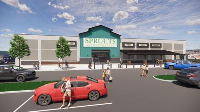 SPROUTS RENDERING