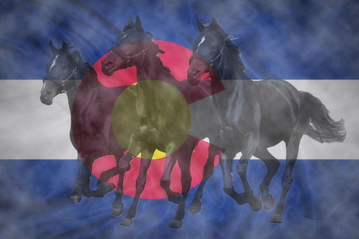 Dark Horses Colorado
