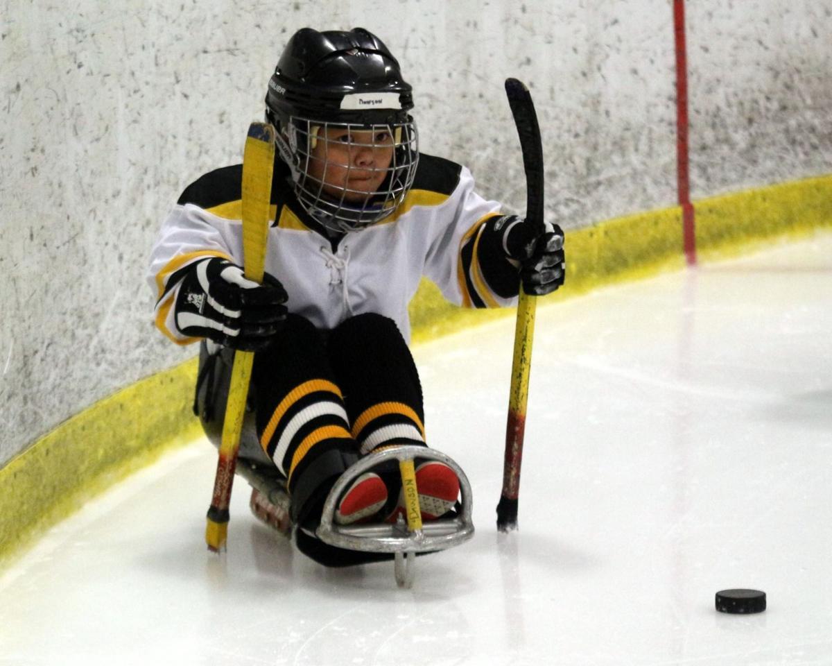 Tigers adaptive hockey.jpg