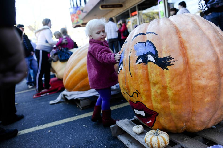16 things to do around Colorado Springs this weekend: Boo at the Zoo, Gallop 5K, big pumpkins, costume sale, Maker Faire