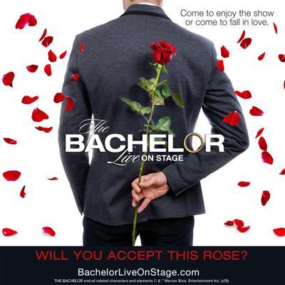 'The Bachelor Live'