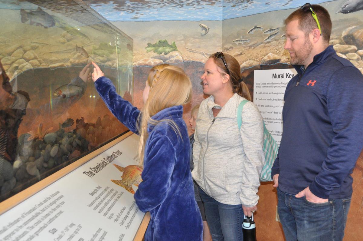 Greenback Cutthroat Trout exhibit at Bear Creek Nature Center