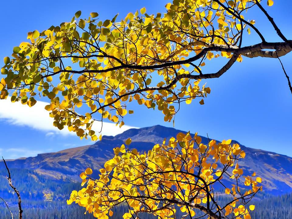 Colorado fall colors: Your guide to the best hikes and