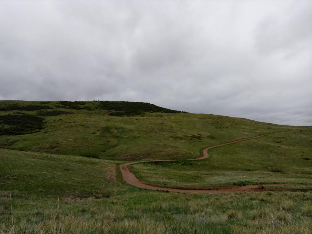 Happy Trails: Find the simple delights of nature at Bluffs Regional Park in Lone Tree