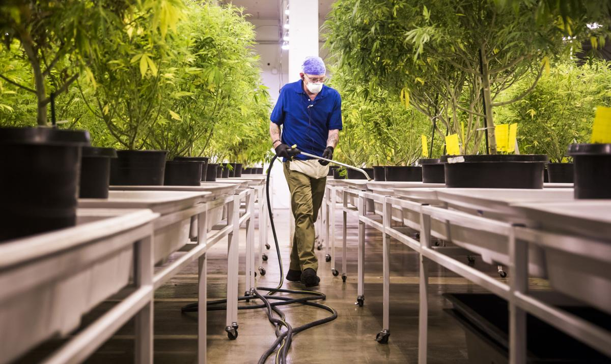 Colorado Springs supplier looks to expand production of