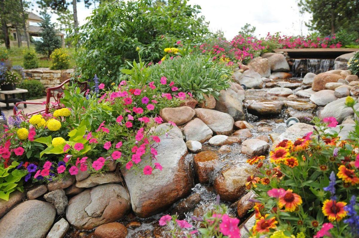Colorado Springs landscaper recognized for flower-filled yard project