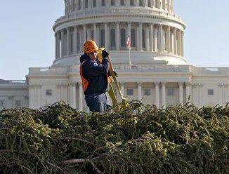 Christmas Tree White House (copy)