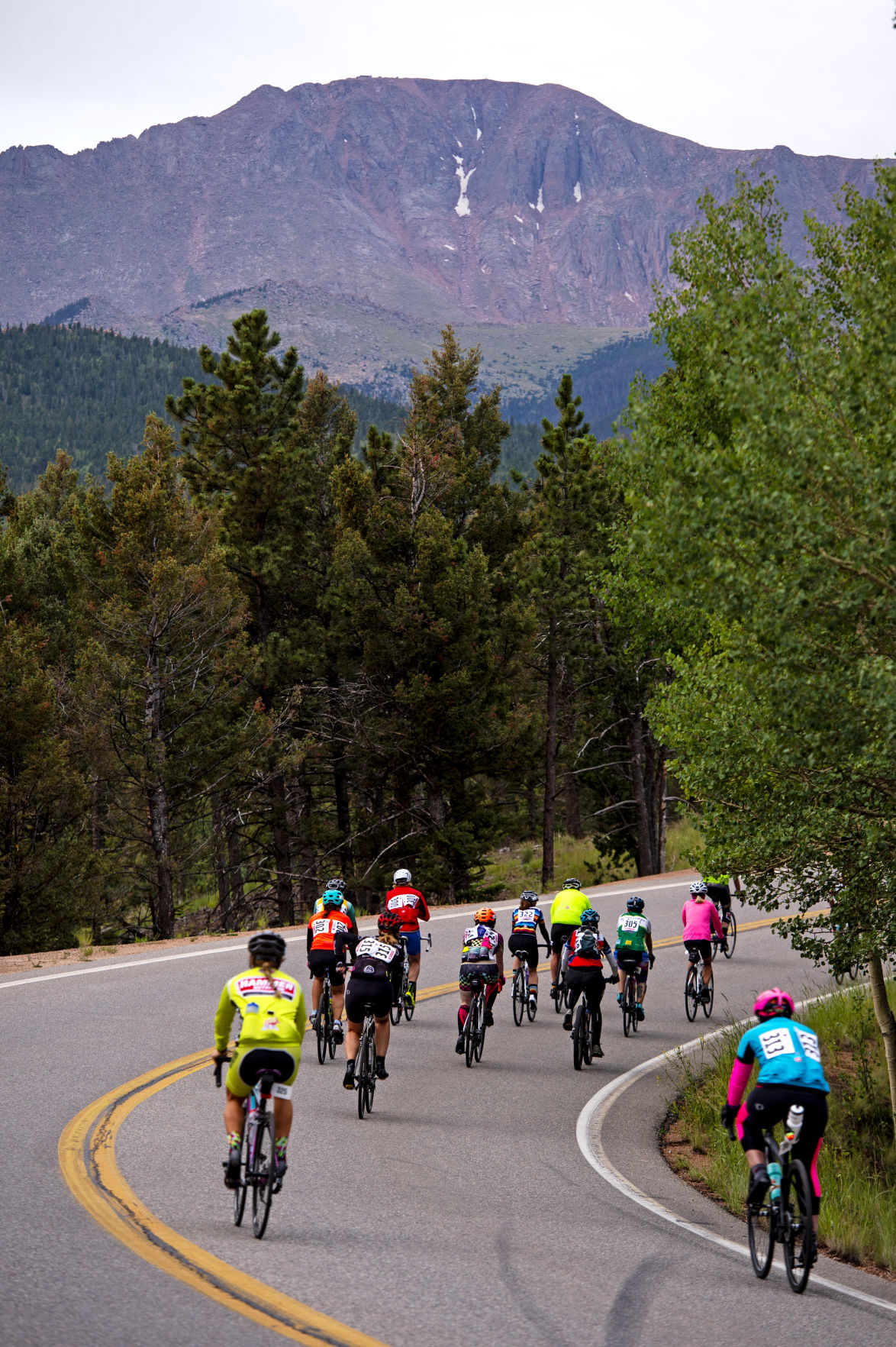Cyclists head up the peak in annual hill climb