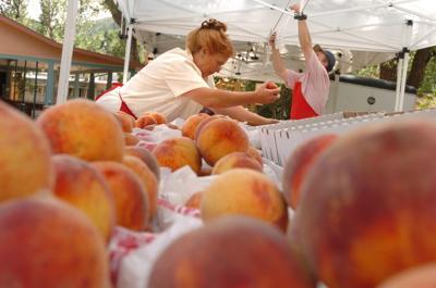 western slope farmers market