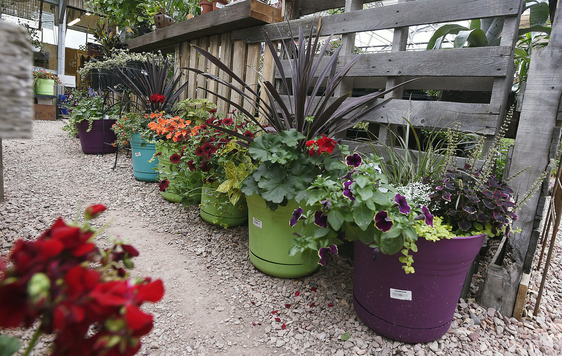 Container Gardening: Good Things Grow In Small Spaces