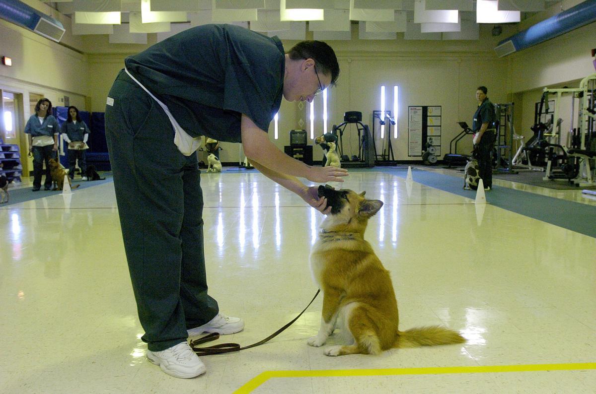 (WOODMEN) Inmates training dogs