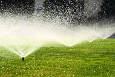 water sprinklers irrigation