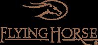FLYING HORSE IMAGE