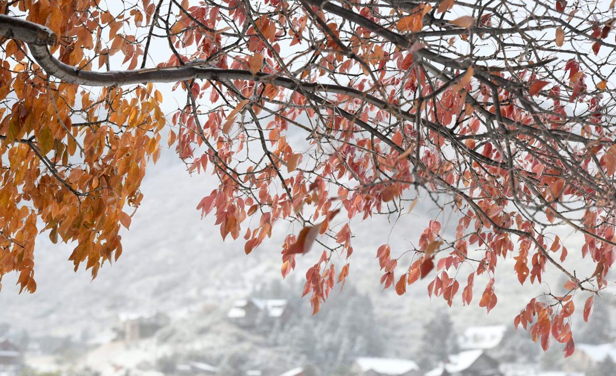 Winter in autumn as snow falls across Front Range