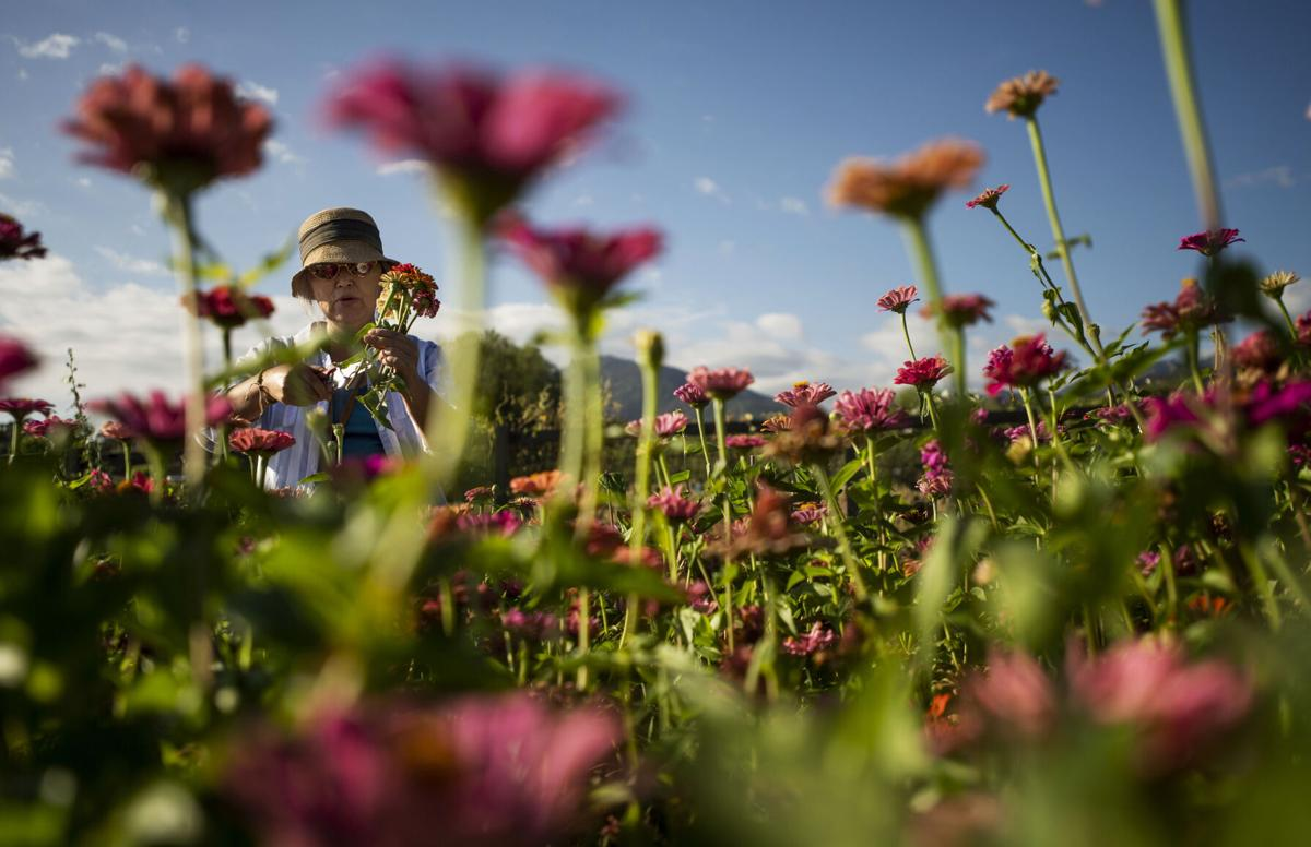 091521-news-ethnic-gardening 01