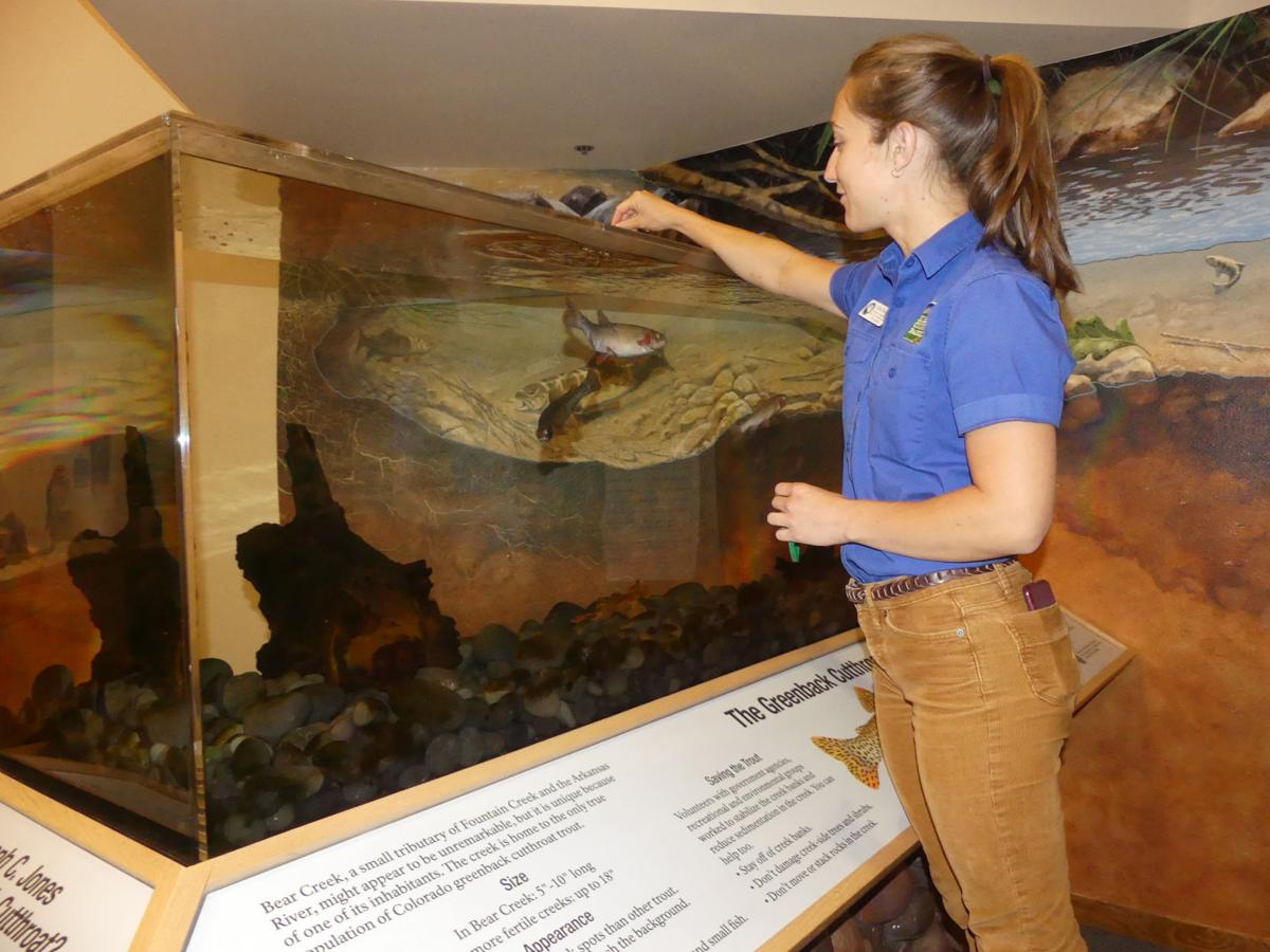 After weathering budget cuts, nature centers are now thriving