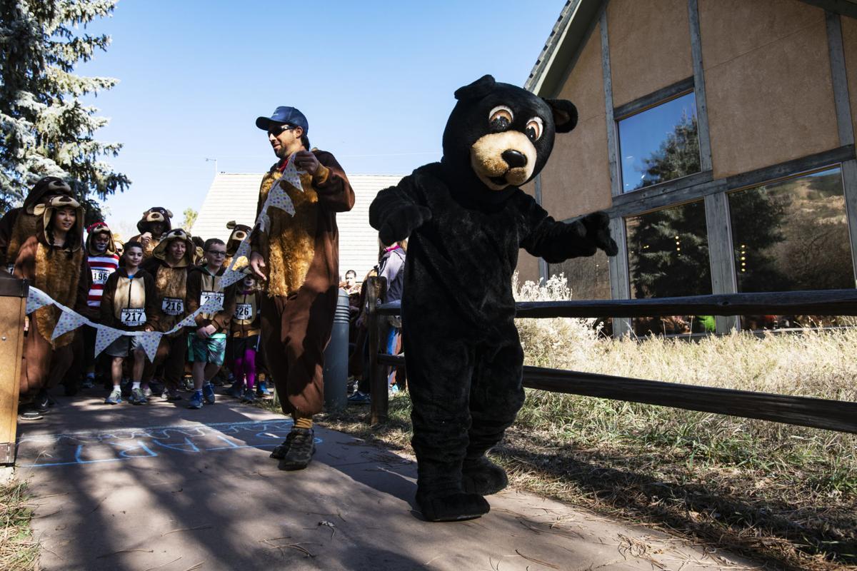 111118-news-bear-run-0198.jpg